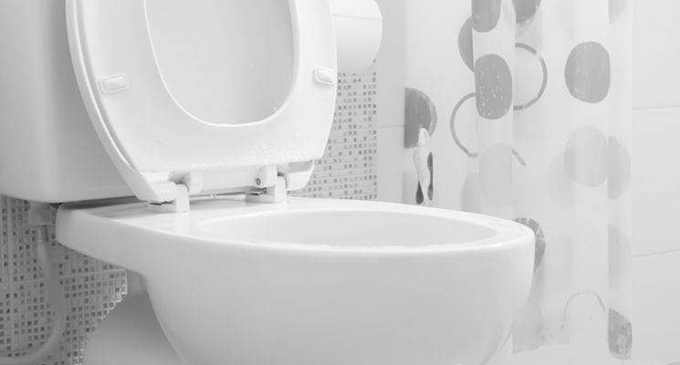 how-to-unclog-blocked-toilet-745x400